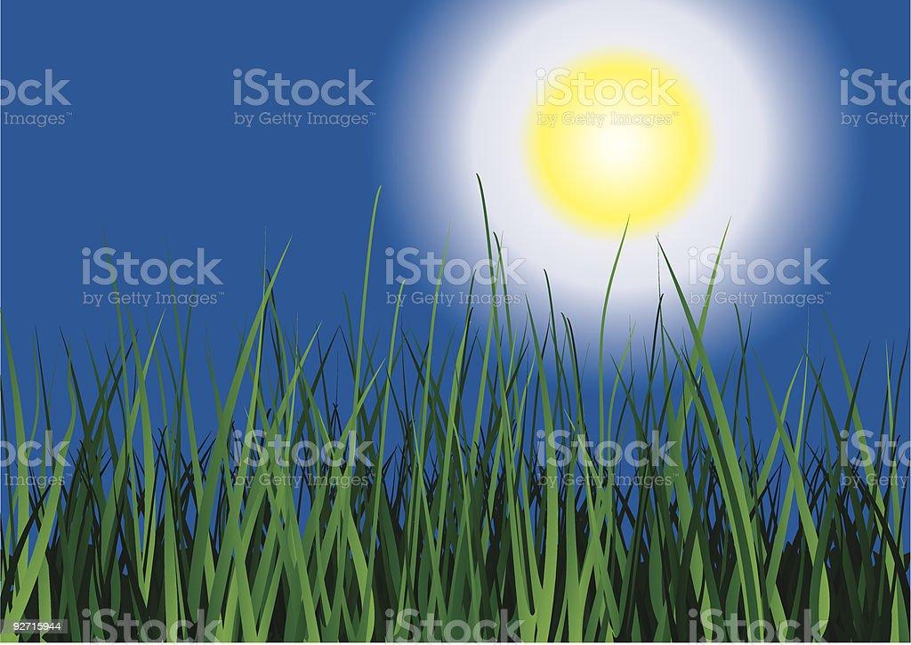 Green grass on sun sky background. royalty-free stock vector art