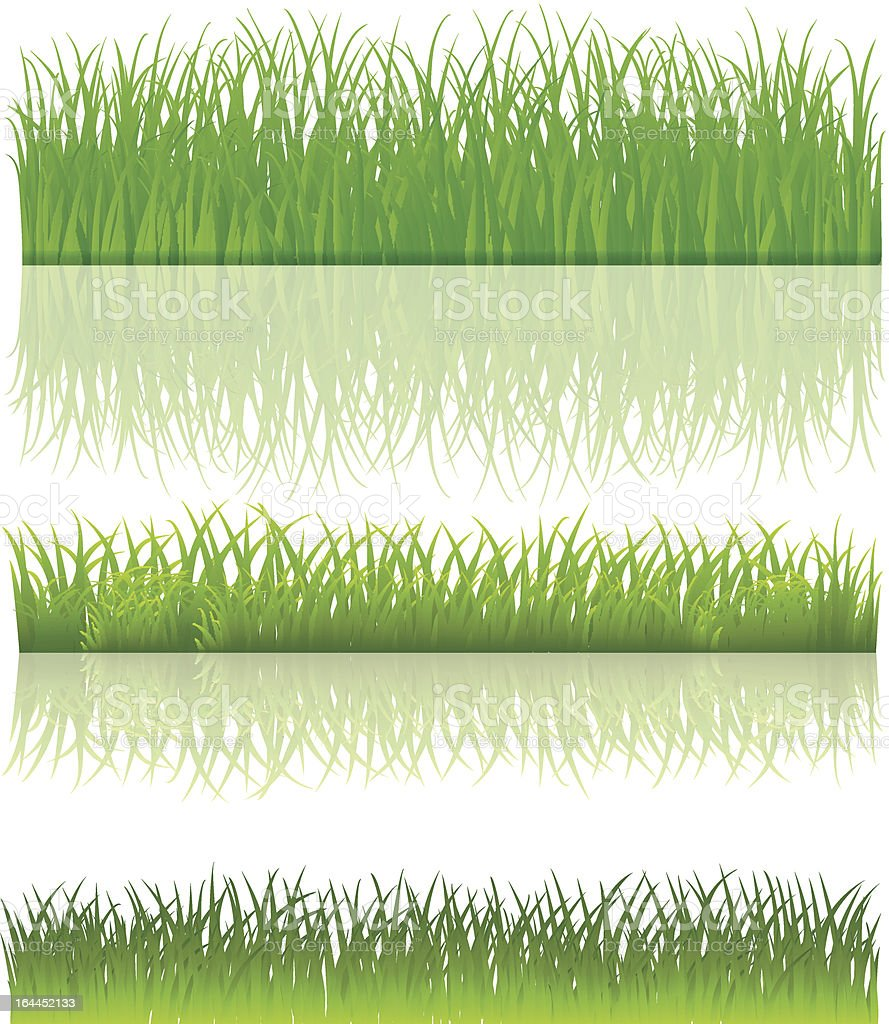 Green grass. Set. Vector. royalty-free stock vector art