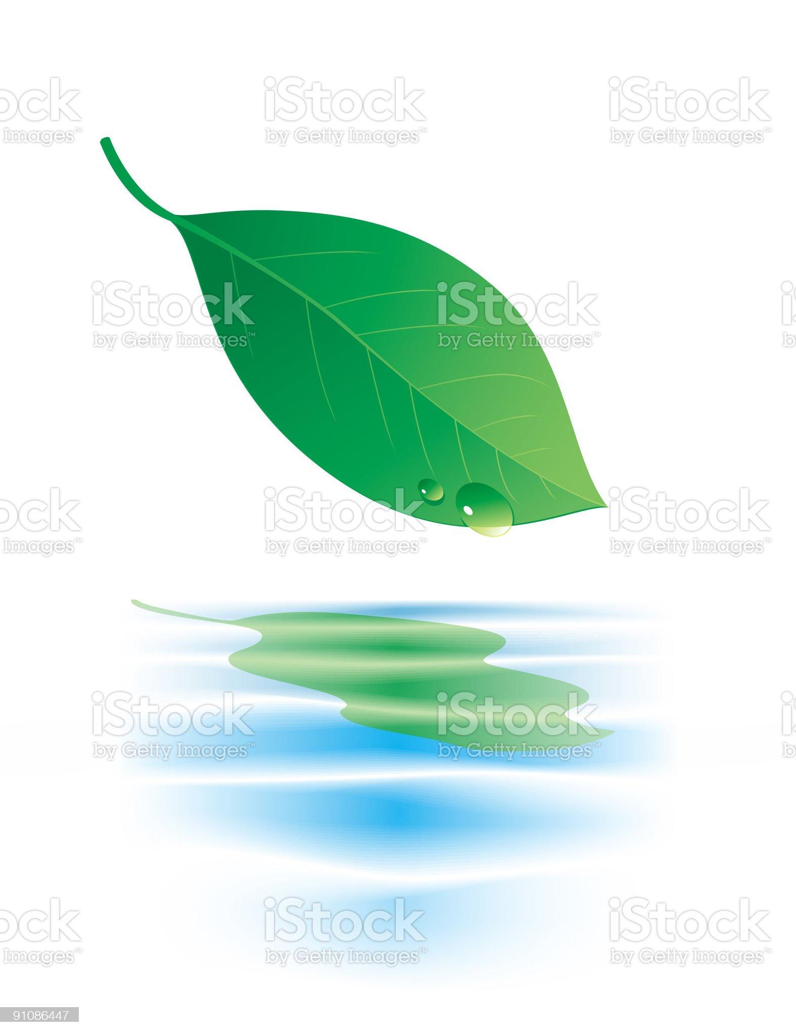Green Leaf royalty-free stock vector art