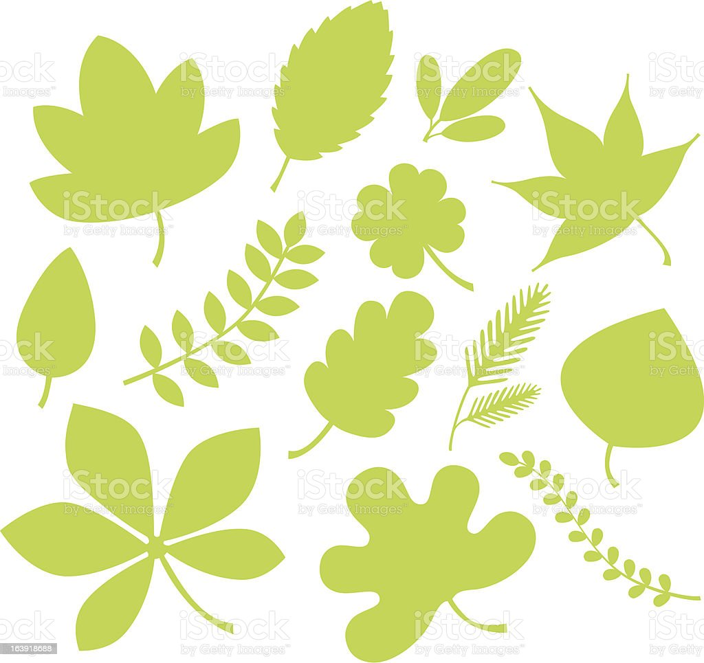 green leaf shapes. royalty-free stock vector art