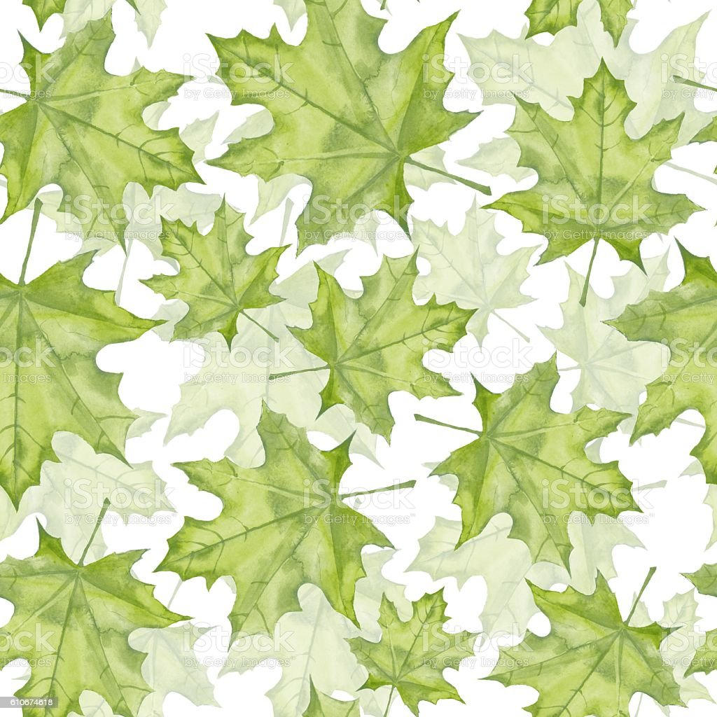Green maple leaves. Seamless pattern. Background 8 vector art illustration