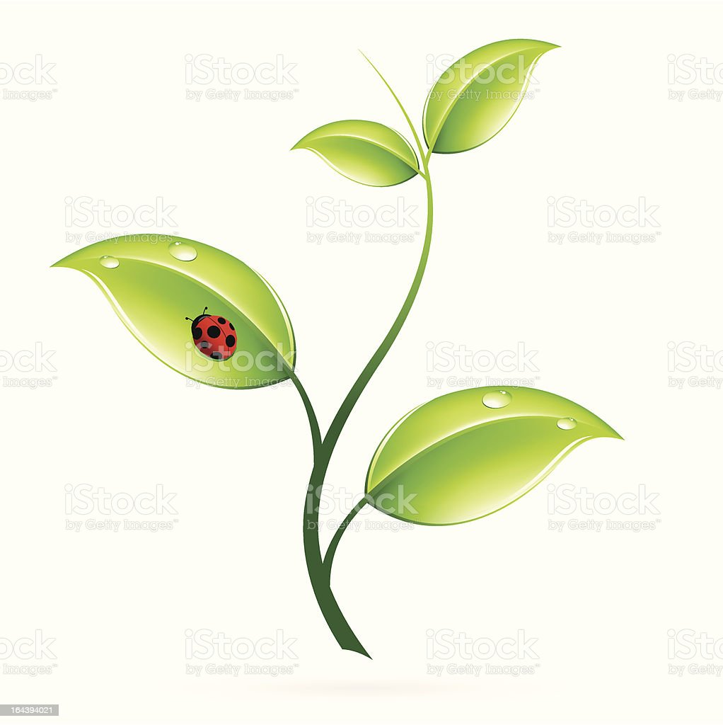 Green sprout royalty-free stock vector art