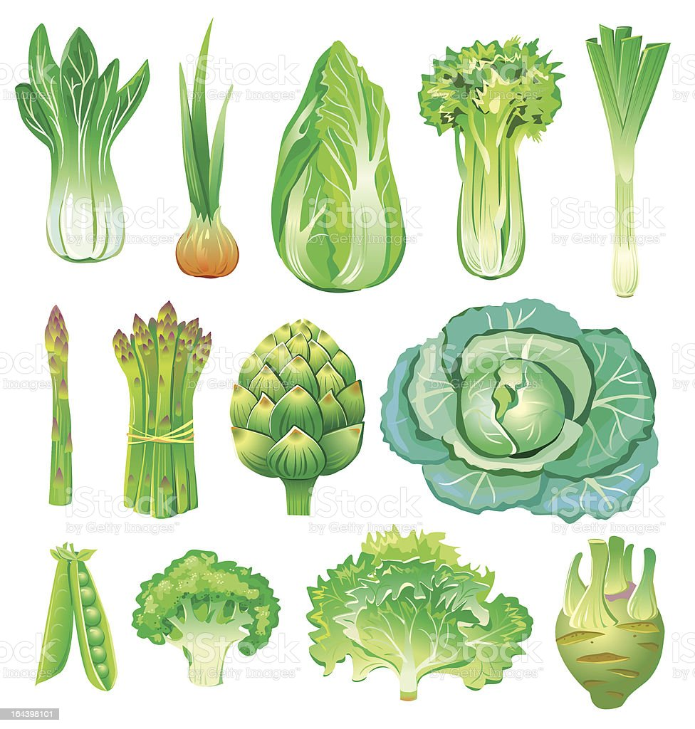 green vegetables vector art illustration