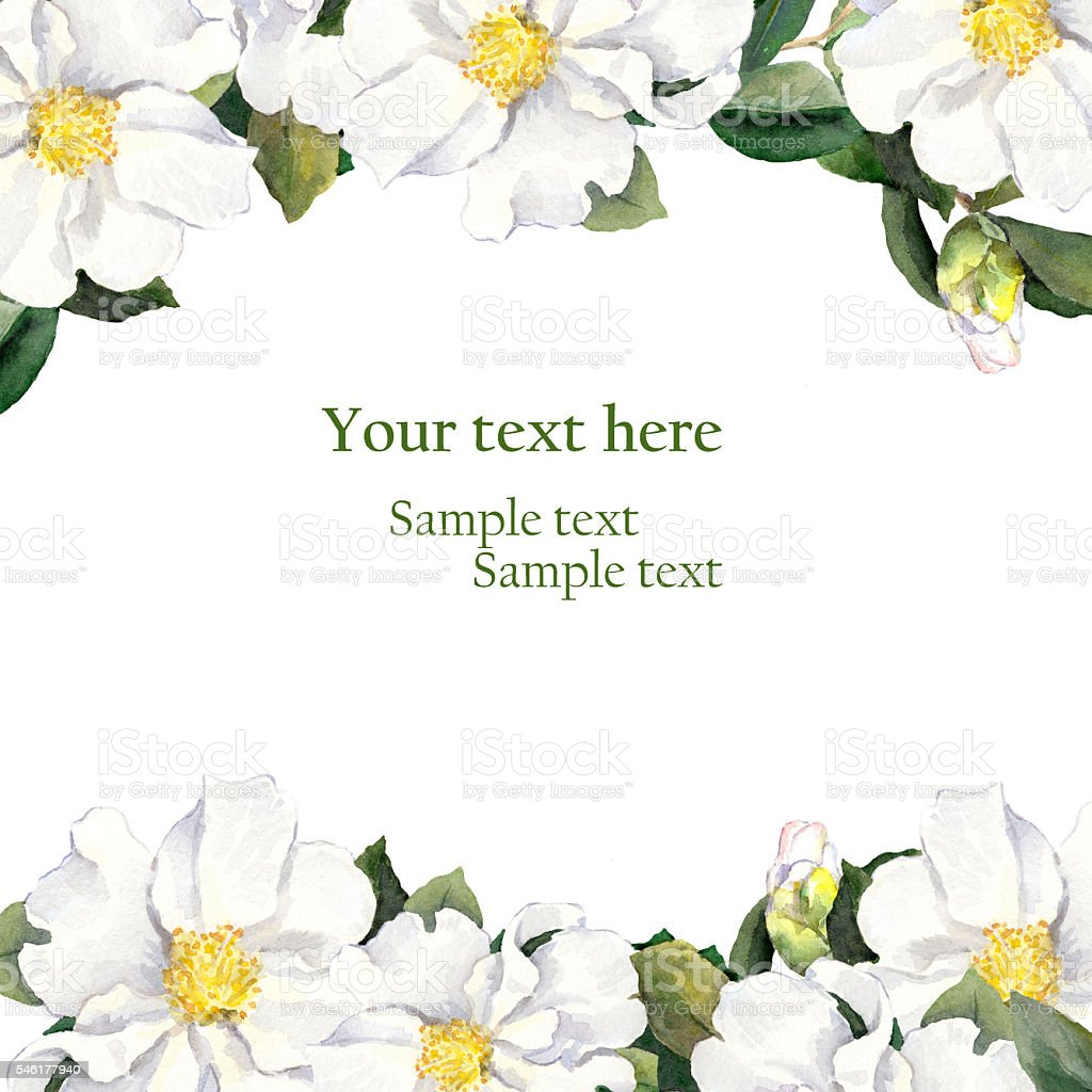Greeting card with floral border - white flowers. Aquarelle vector art illustration