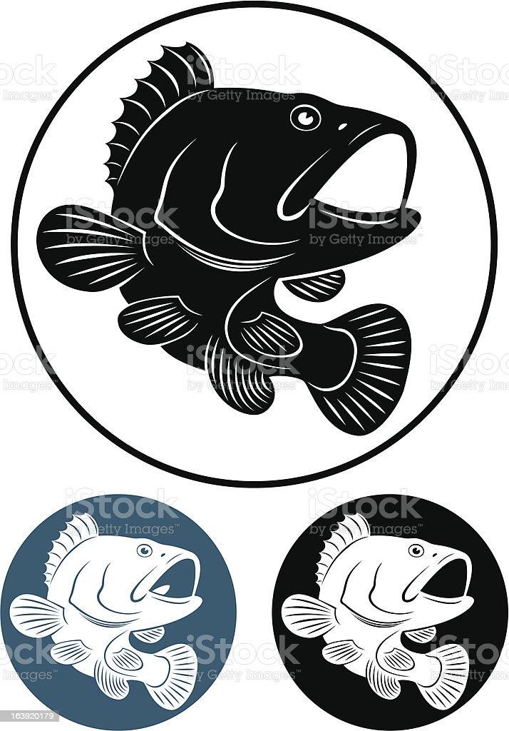 grouper fish vector art illustration