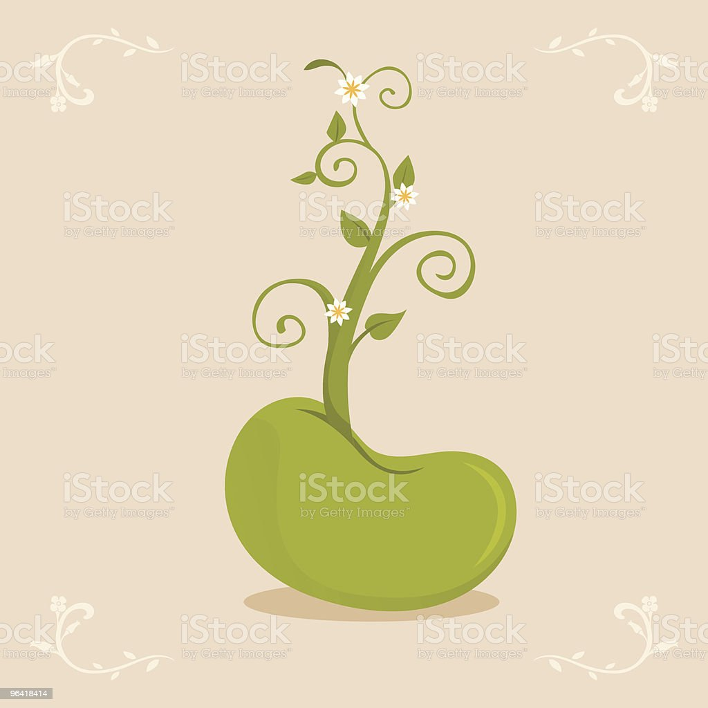 Growing bean sprout vector art illustration