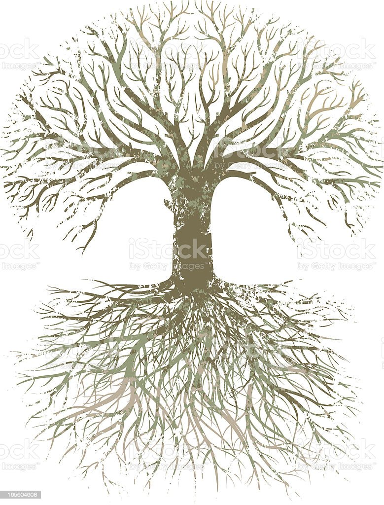 Grunge large tree roots. royalty-free stock vector art