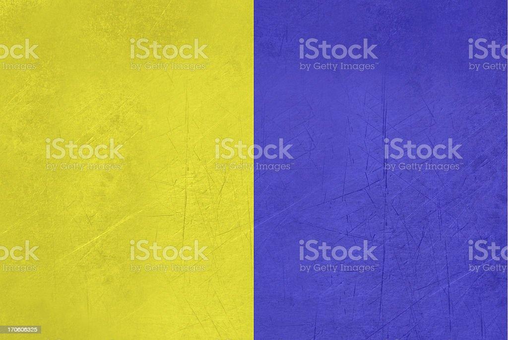 Grunge Modena flag vector art illustration