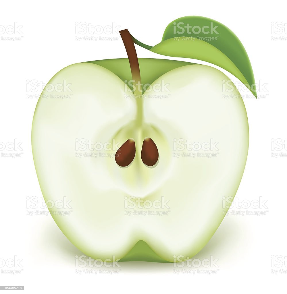 Half a green apple vector art illustration