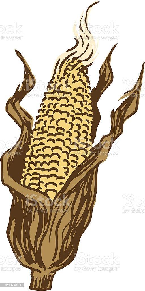 hand drawn corn royalty-free stock vector art