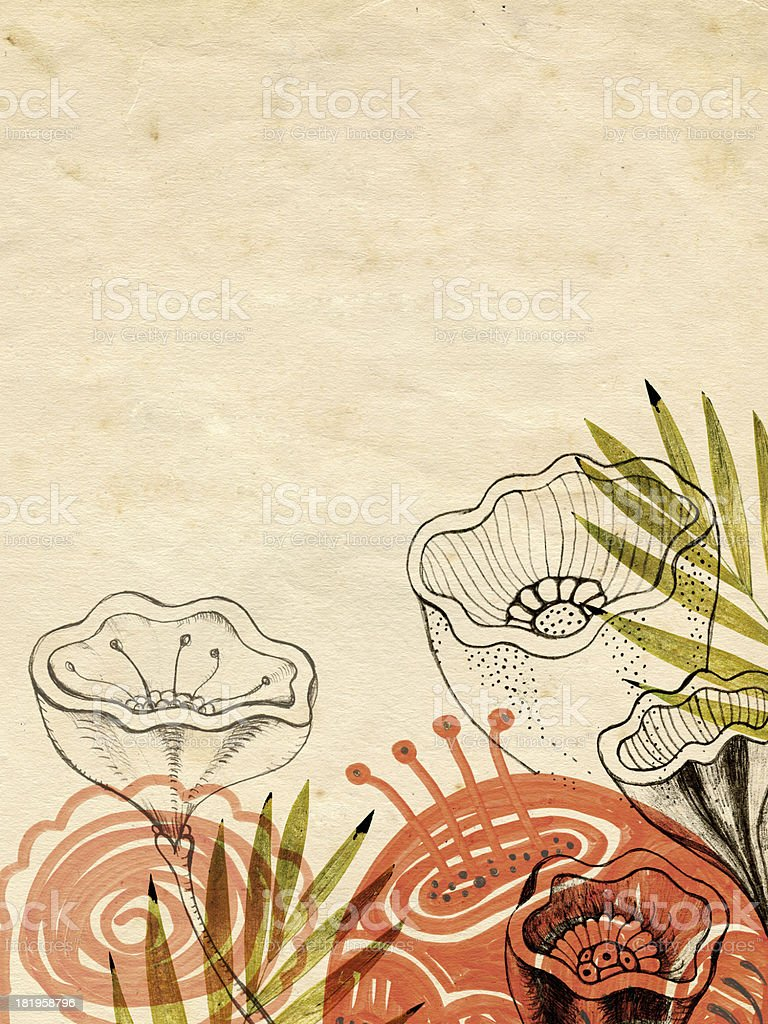 Hand drawn flowers and pressed leaves on old paper royalty-free stock vector art