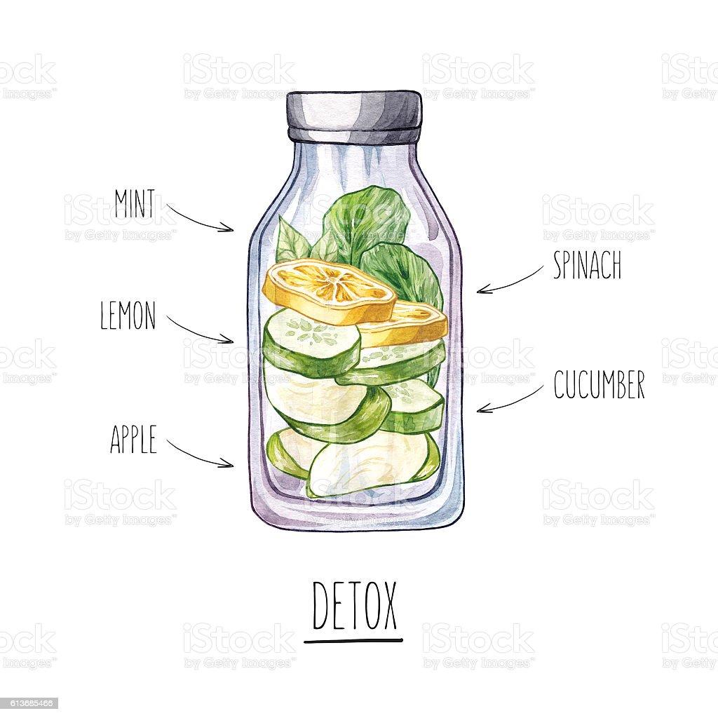 Hand drawn watercolor illustration with bottle and fruit ingredi vector art illustration