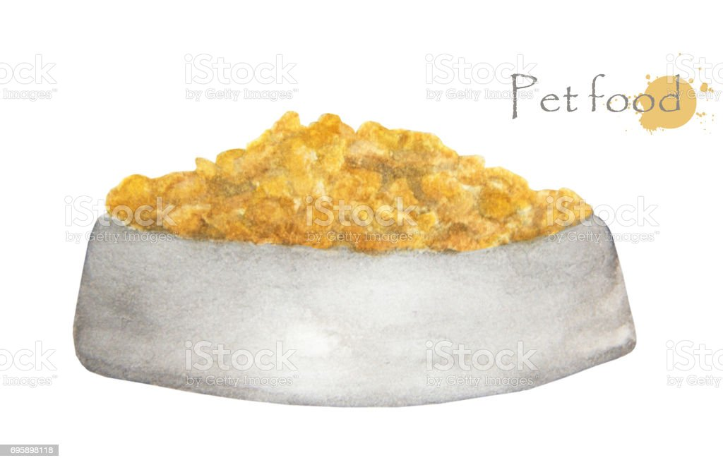 Hand drawn watercolor painting of Pet food in bowl, isolated on white vector art illustration