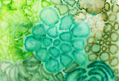 Hand painted background with various mottled shapes and green colors