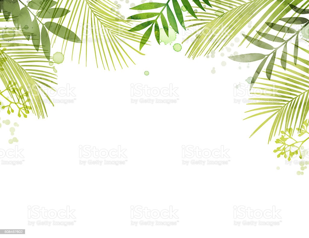 Hand Painted Watercolor Tropical Palm Leaf Frame vector art illustration