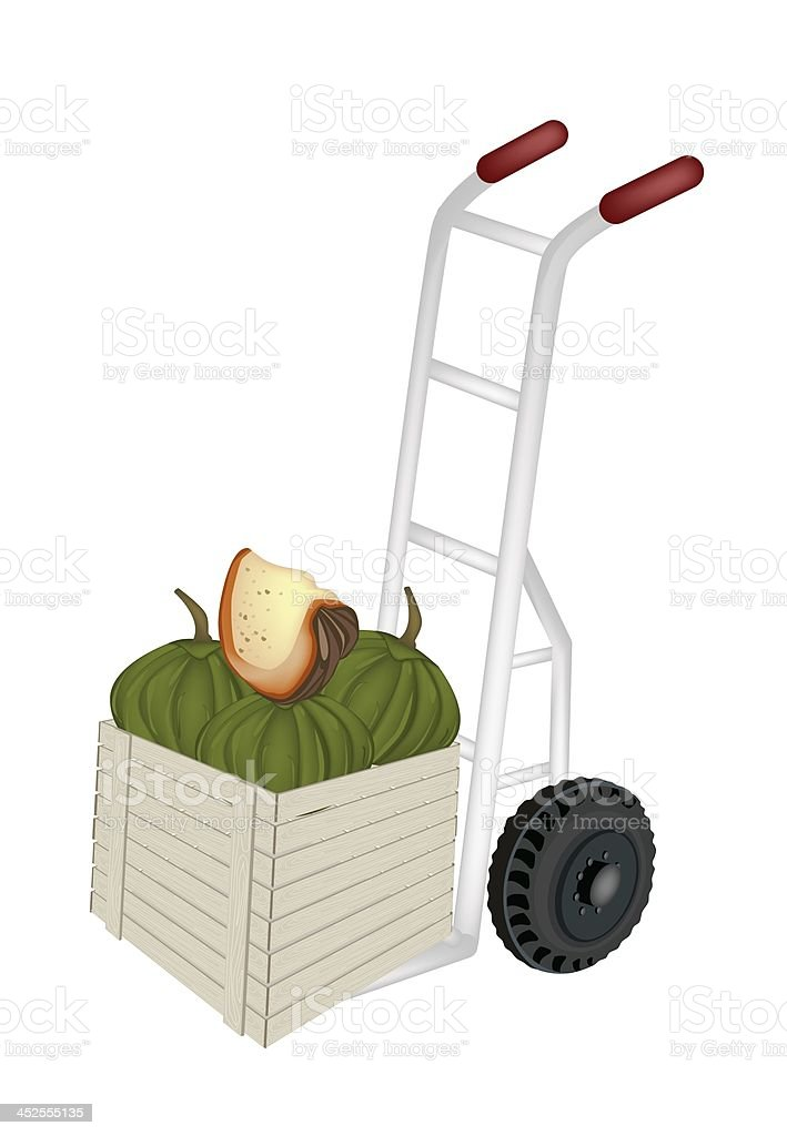 Hand Truck Loading Green Pumpkins in Shipping Box royalty-free stock vector art