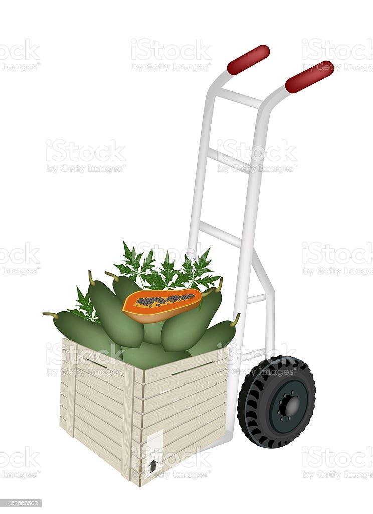 Hand Truck Loading Papayas in Shipping Box royalty-free stock vector art