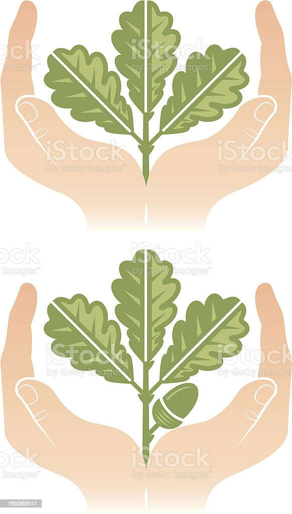 Hands and twig royalty-free stock vector art