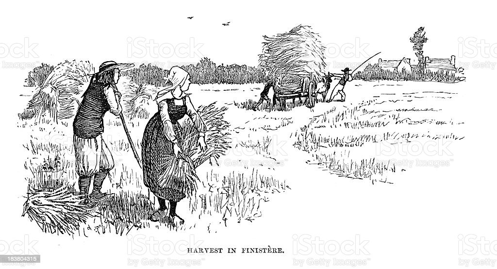 Harvest in Finistère vector art illustration