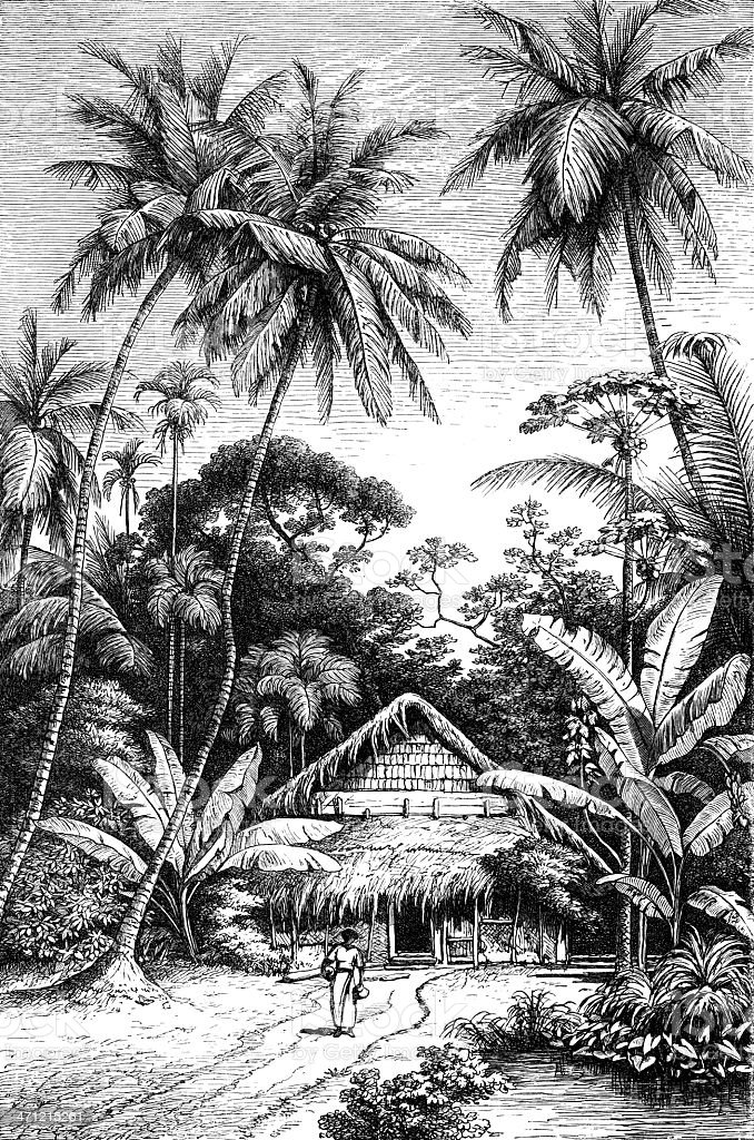 hawaii royalty-free stock vector art