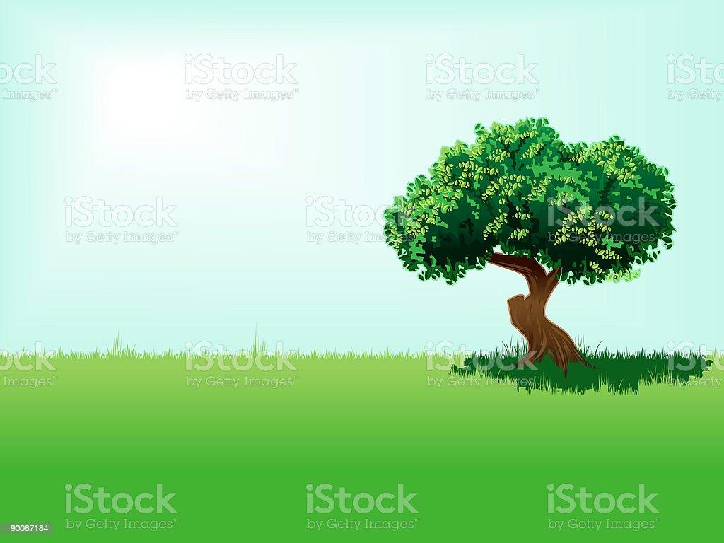 Healthy tree, sunny day royalty-free stock vector art
