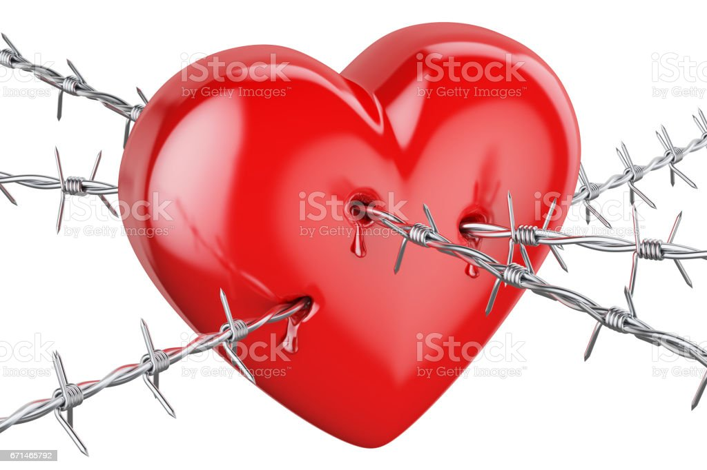 Heart pierced with barbed wire, 3D rendering isolated on white background stock photo