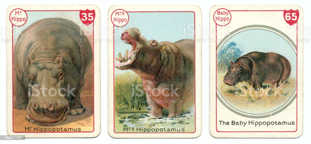 Three hippopotamus playing cards Victorian animal families game vector art illustration