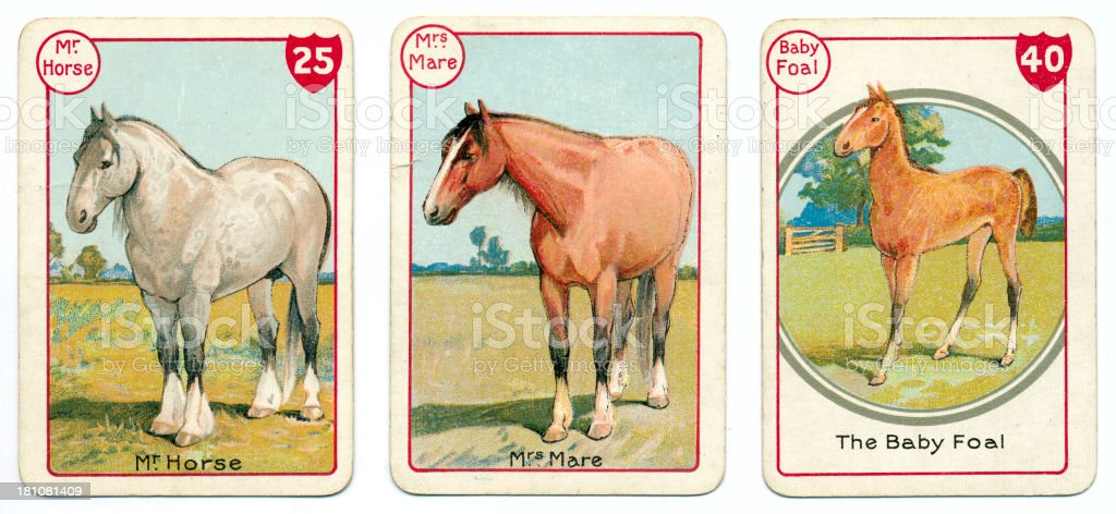 Three horse cards Victorian animal families game vector art illustration