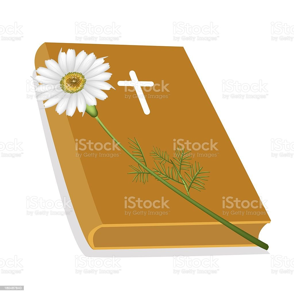 Holy Bible with Wooden Cross and Daisy Flower vector art illustration