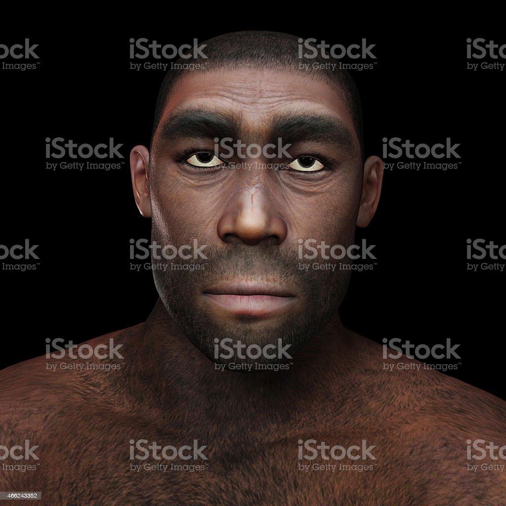 Homo Erectus vector art illustration