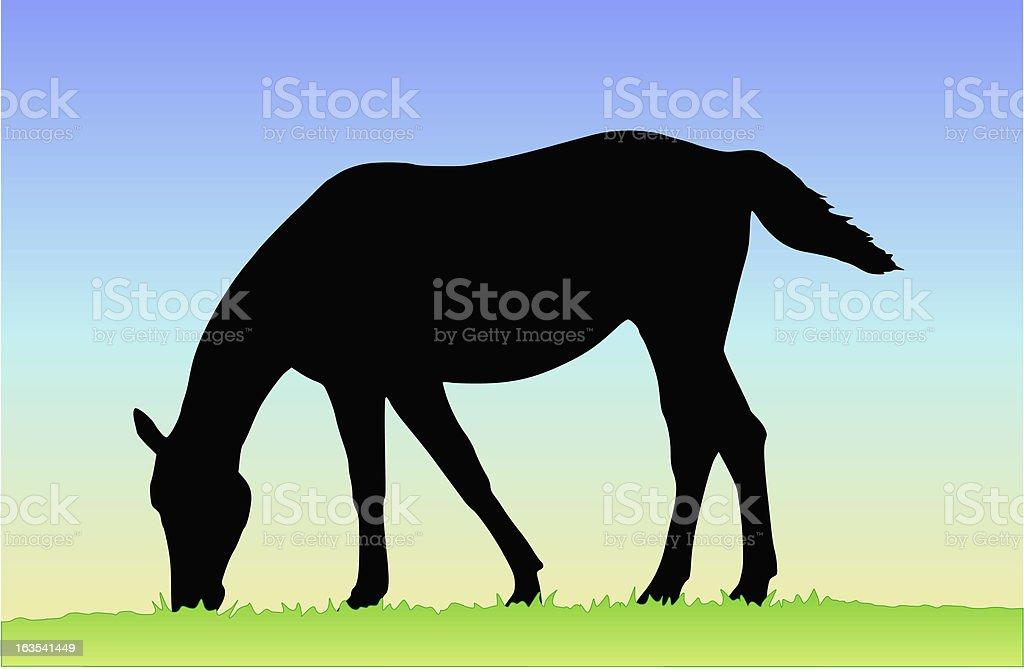 Horse eating grass royalty-free stock vector art