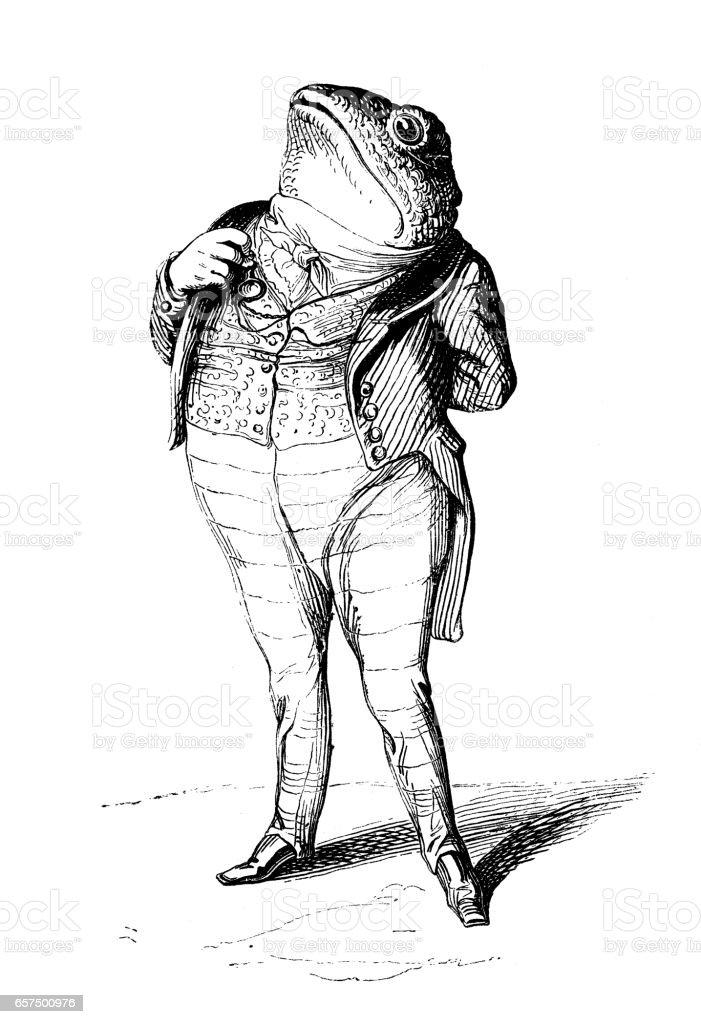 Humanized animals illustrations: Frog vector art illustration