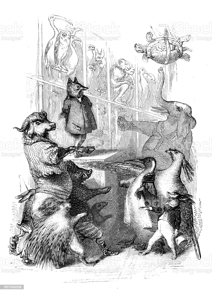 Humanized animals illustrations: Group vector art illustration