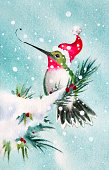 Hummingbird Comes Home For the Holidays