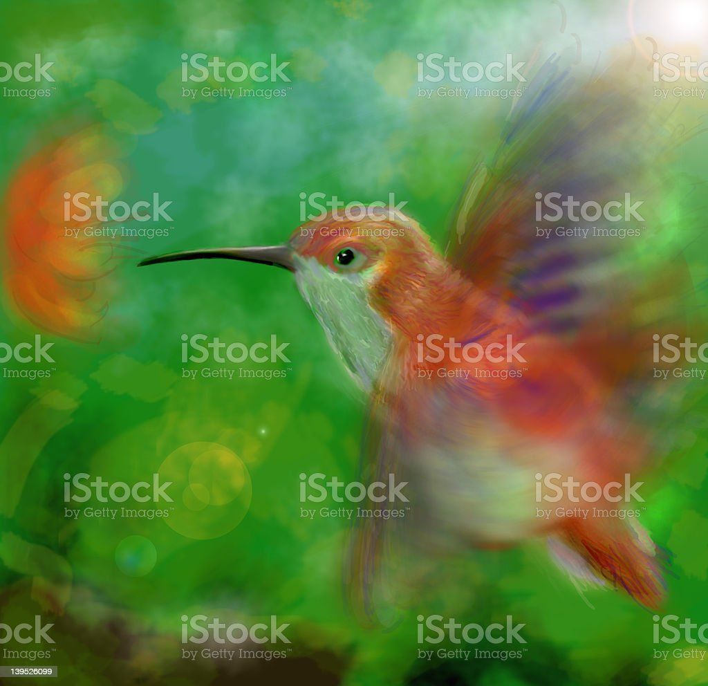 Hummingbird royalty-free stock vector art