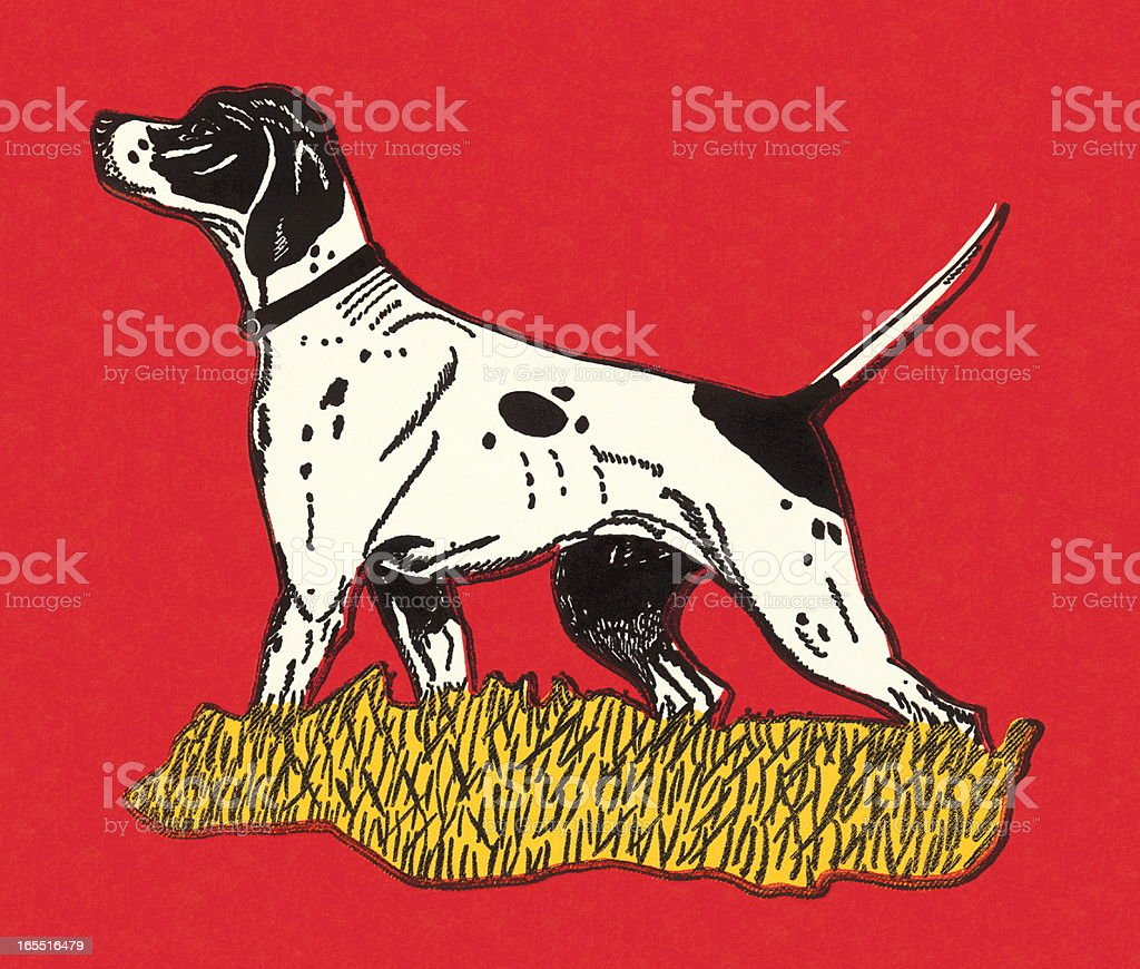 Hunting Dog royalty-free stock vector art