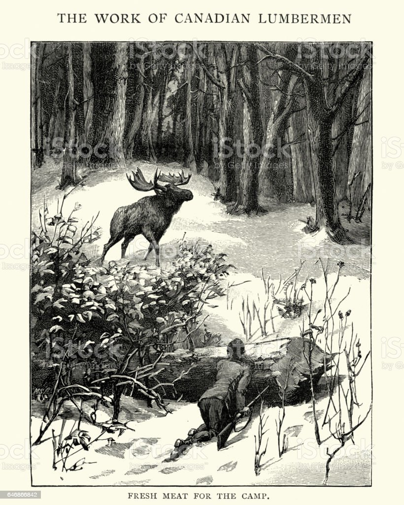 Hunting moose in the Canadian forest, 19th Century vector art illustration