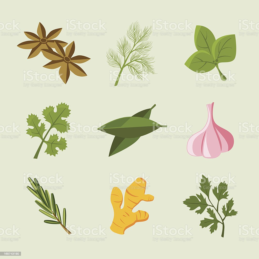 Icon Set: Herb & Spice Icons vector art illustration