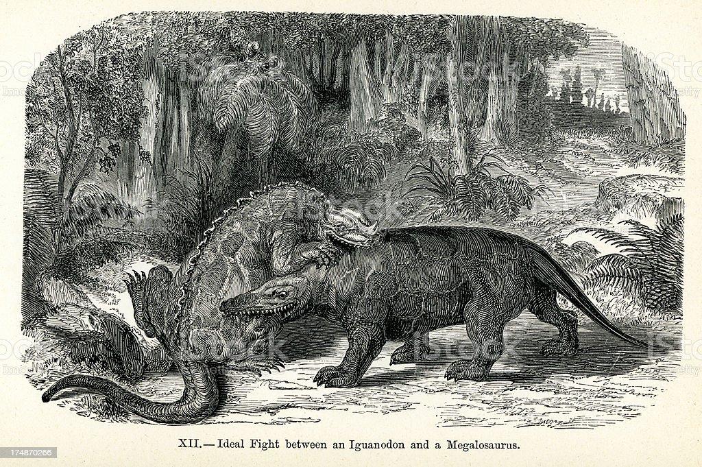 Iguanodon and Megalosaurus royalty-free stock vector art