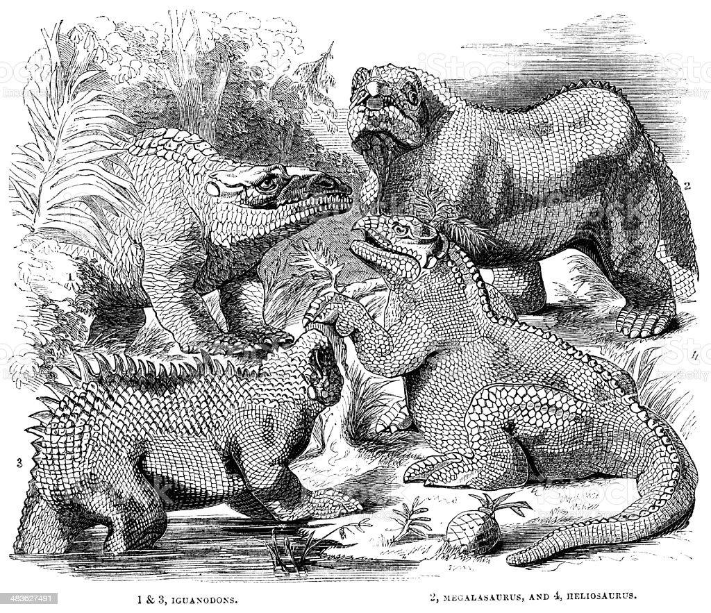 Iguanodons, Megalosaurus and Heliosaurus - 1855 illustration vector art illustration