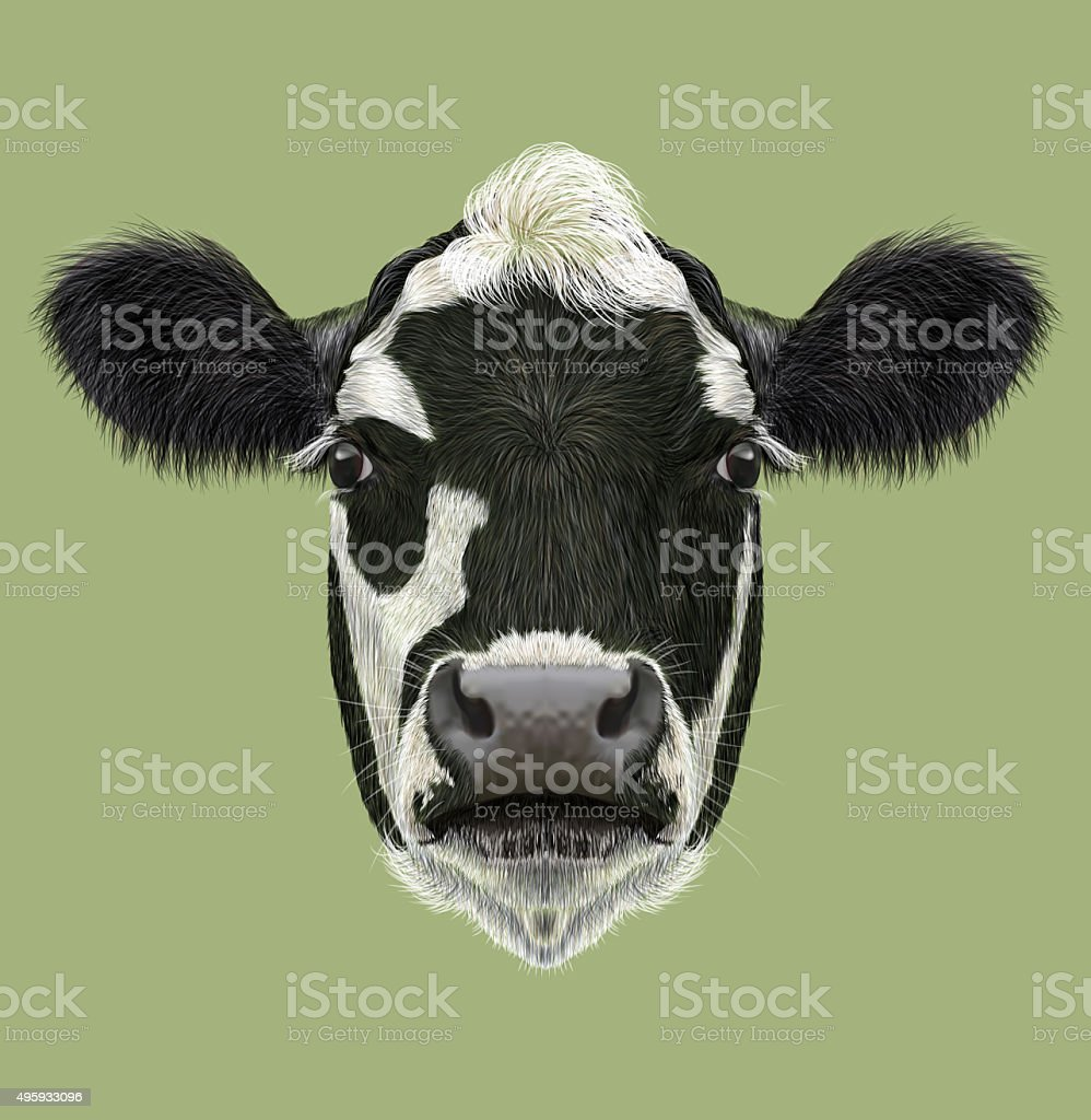 Illustraited Portrait of Cow vector art illustration