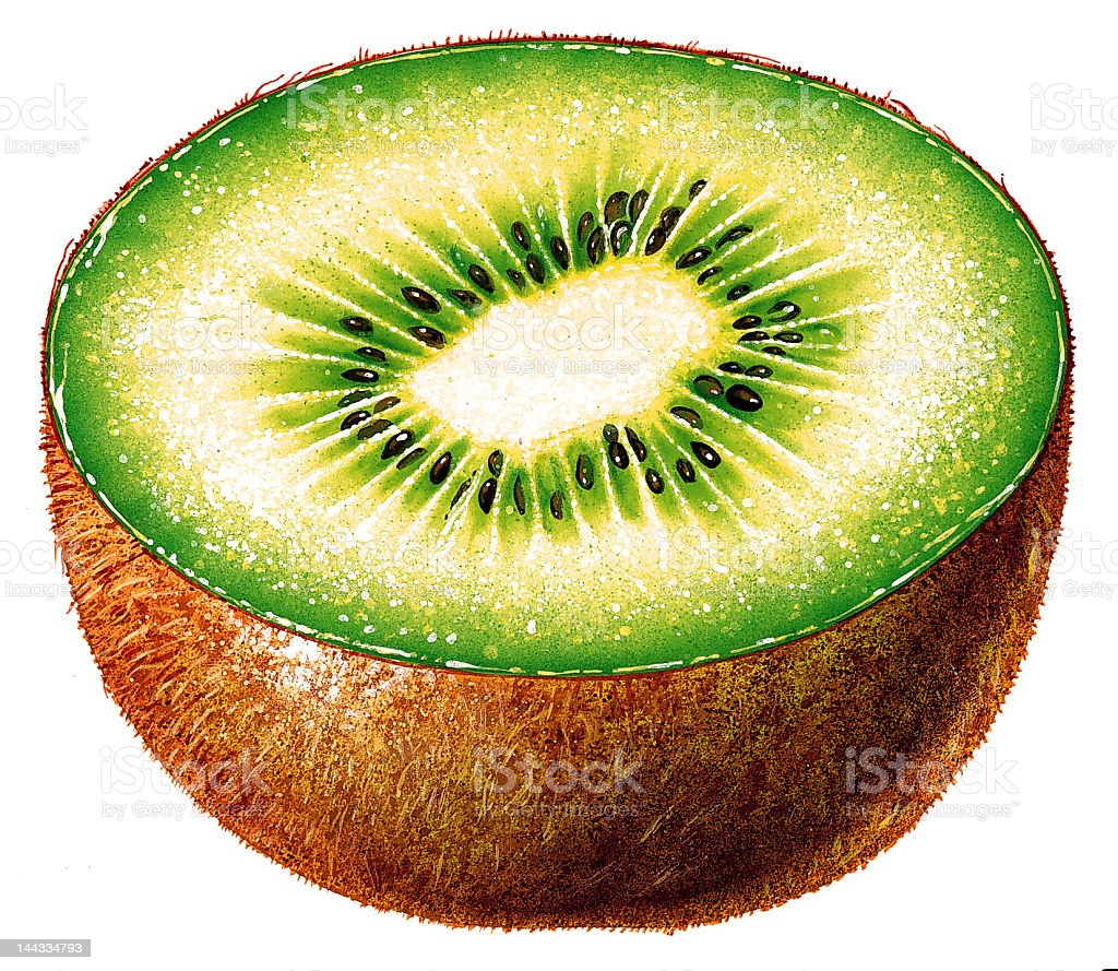Illustrated kiwi -Cut in half royalty-free stock vector art