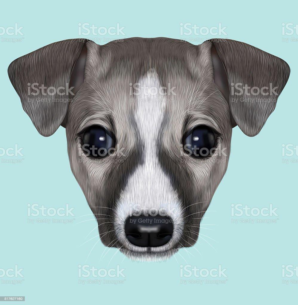 Illustrated Portrait of Whippet puppy. vector art illustration