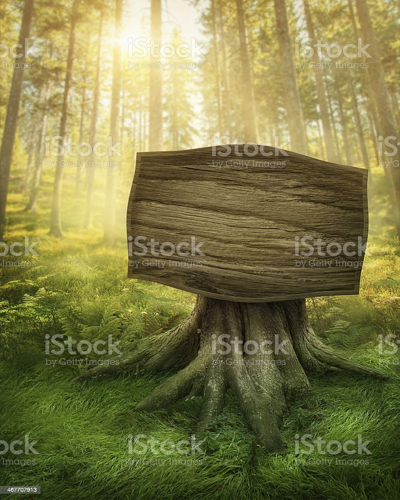 Illustrated wooden sign at the entrance of old, green forest vector art illustration