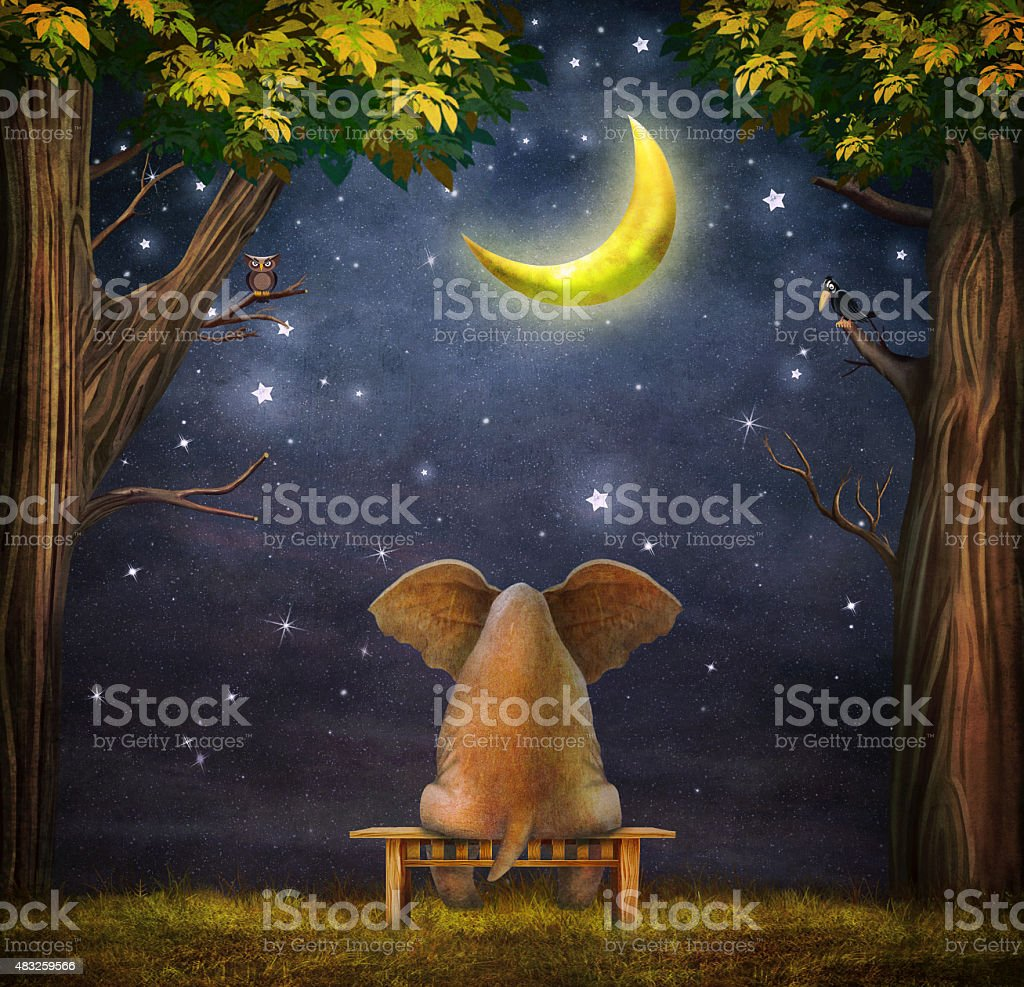 Illustration of a elephant on a bench in  forest vector art illustration