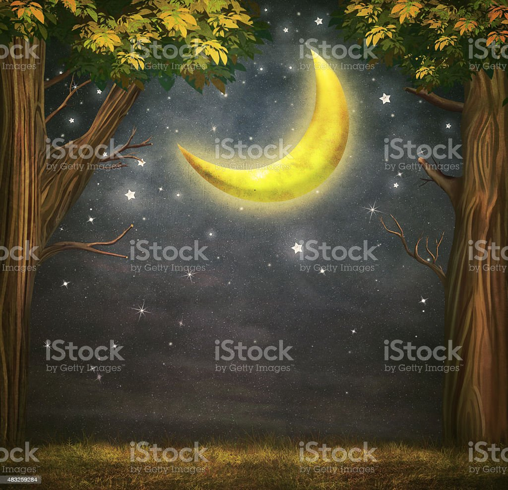 Illustration of a forest and fantastic moon vector art illustration