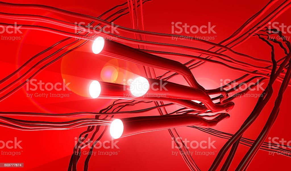 illustration of artery system with searchlight vector art illustration