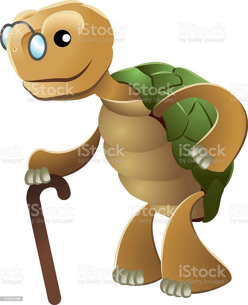 Illustration of elderly tortoise vector art illustration