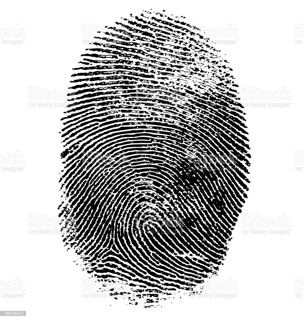 Illustration of fingerprint vector art illustration