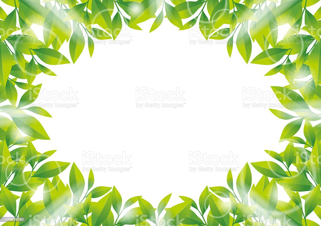 Illustration of frame of tea leaf. vector art illustration